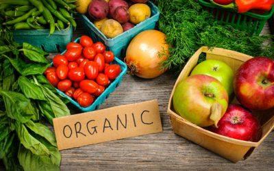 Волинська торгово-промислова палата запрошує на першу регіональну конференцію  з органічного виробництва