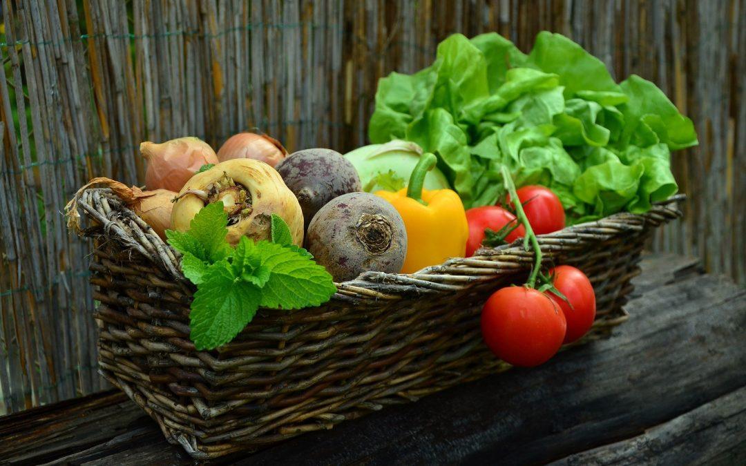 Запит сінгапурської сторони до українських експортерів аграрної та харчової продукції.
